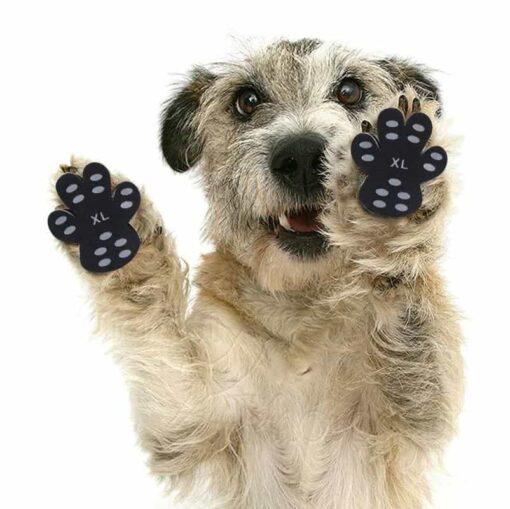 Psie nálepka pre labky