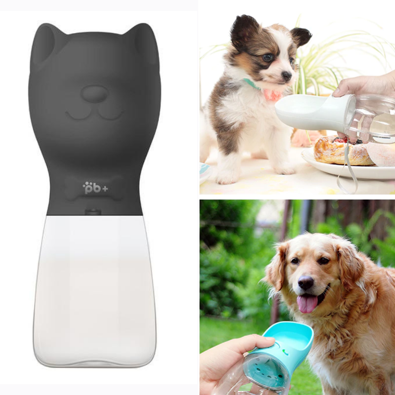 Prenosná fľaša na vodu pre psa